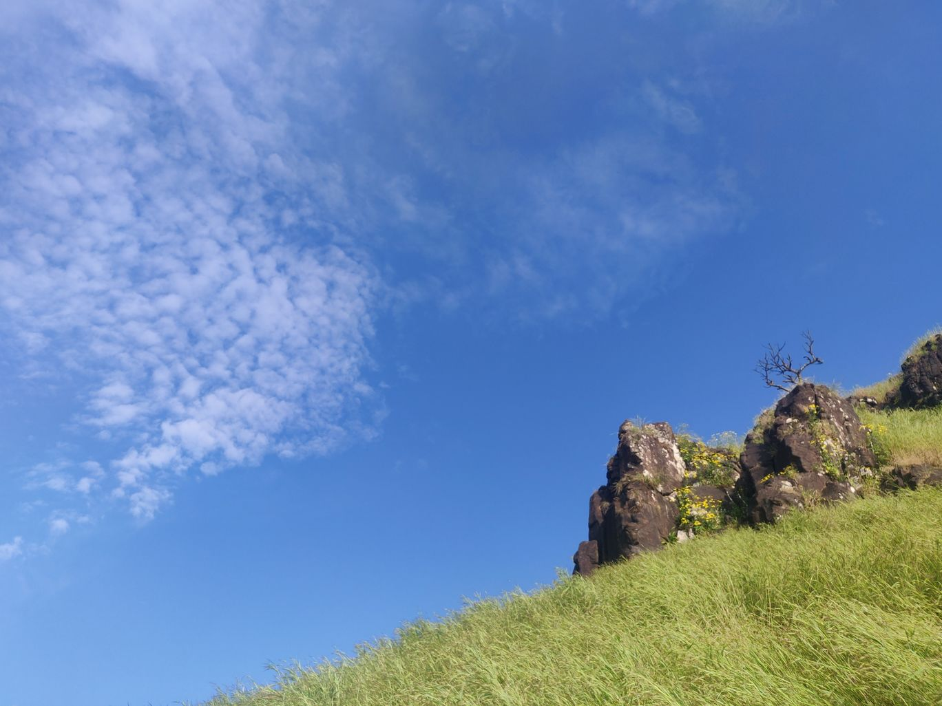 Photo of Garbett Plateau By Diana Dsouza