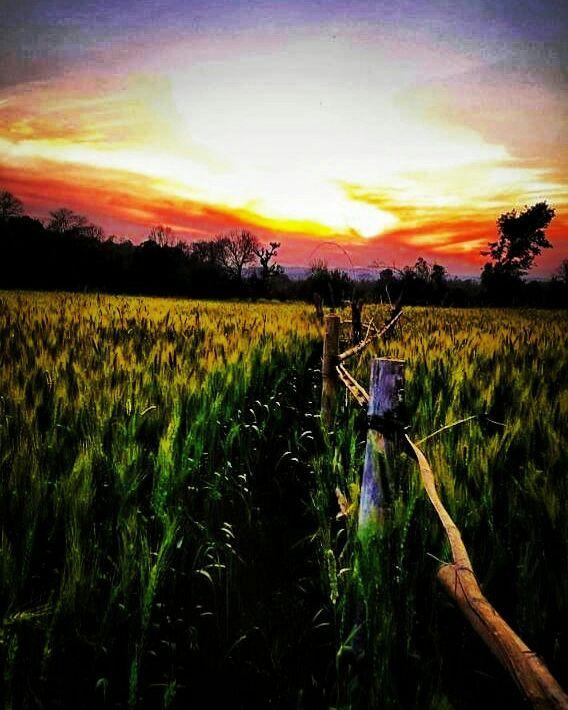 Photo of Kangra By Kunwar Vishal Singh