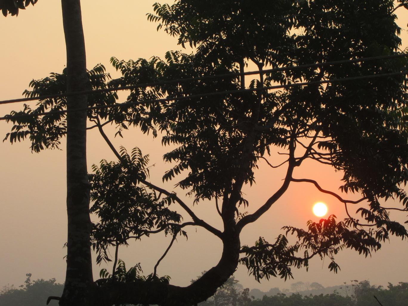 Photo of Palghat By Krishnadev
