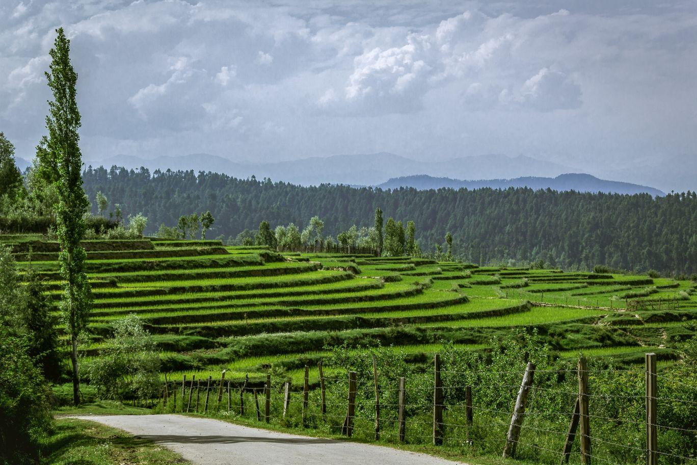 Photo of Baramulla - Gulmarg Road By KaranVeer Monga