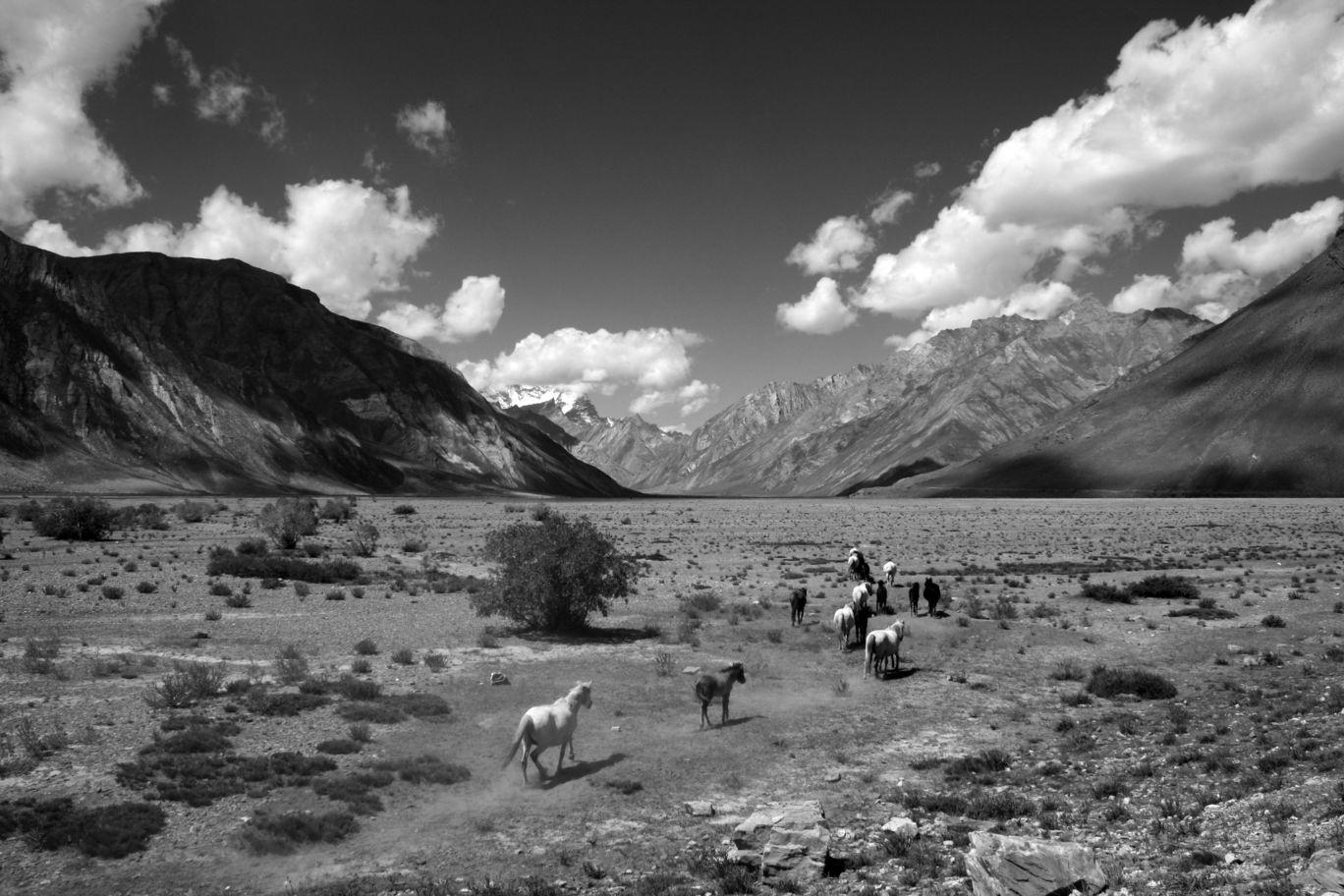 Photo of Zanskar By Sarab Jit Singh