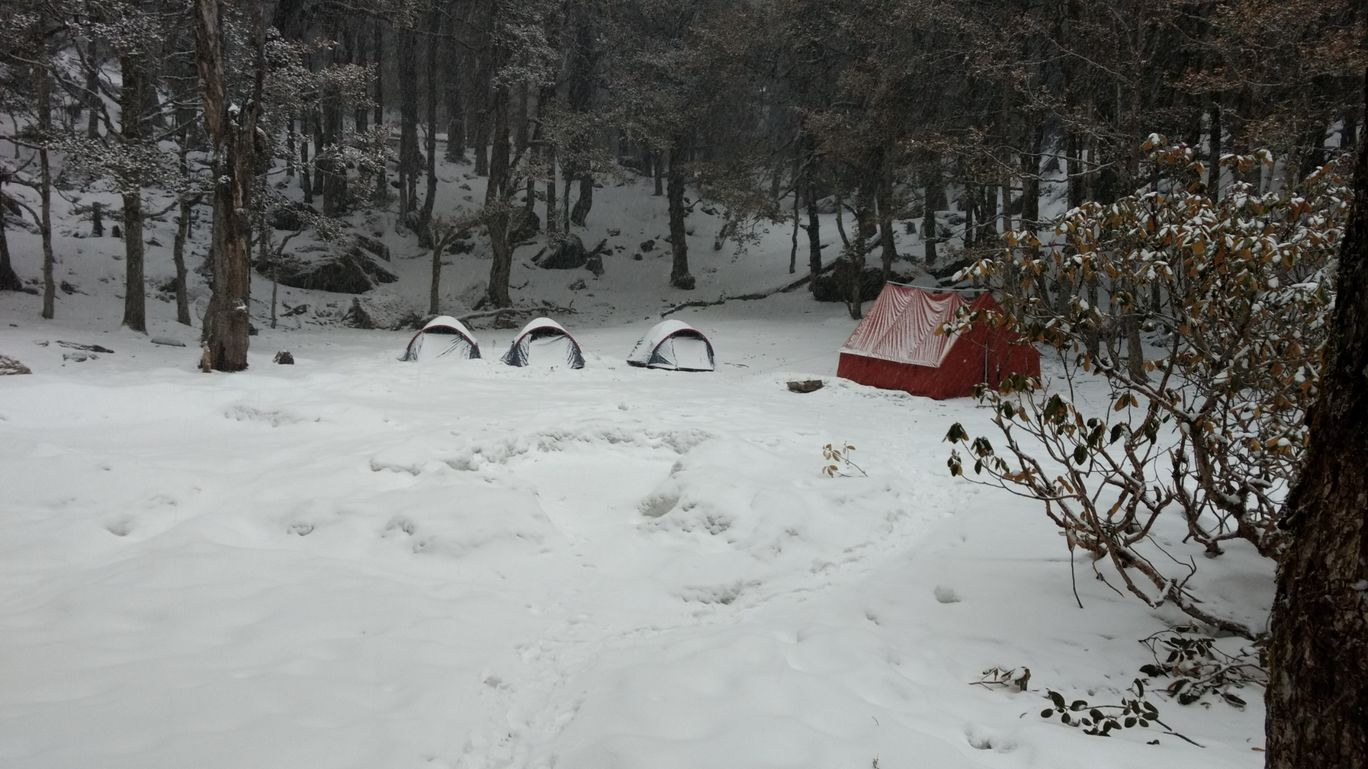 Photo of Kuari Pass Adventure Trek Camp By Ashish Goyal