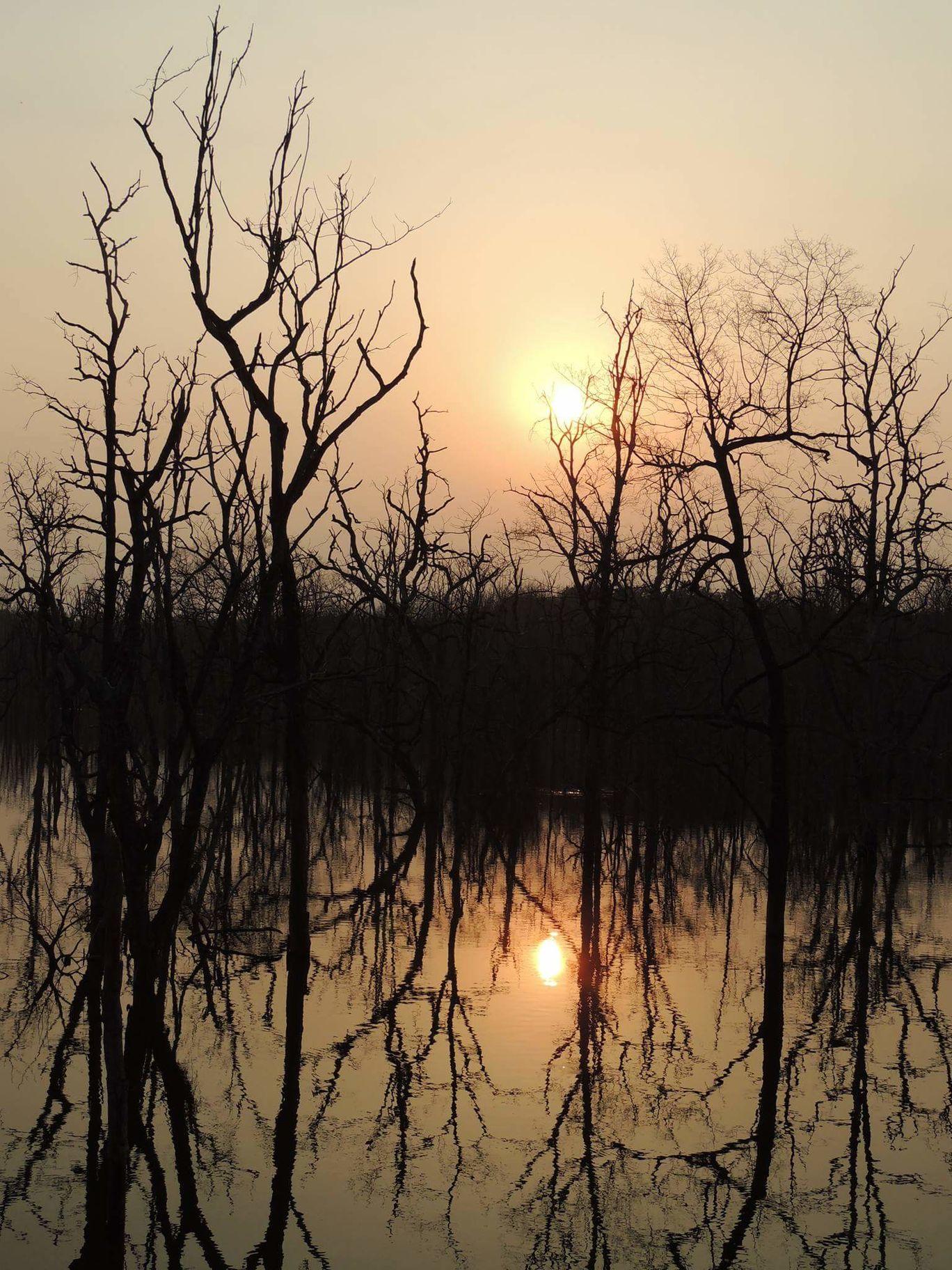 Photo of Barnawapara Forest Range By Jitendra Kumar Sahu