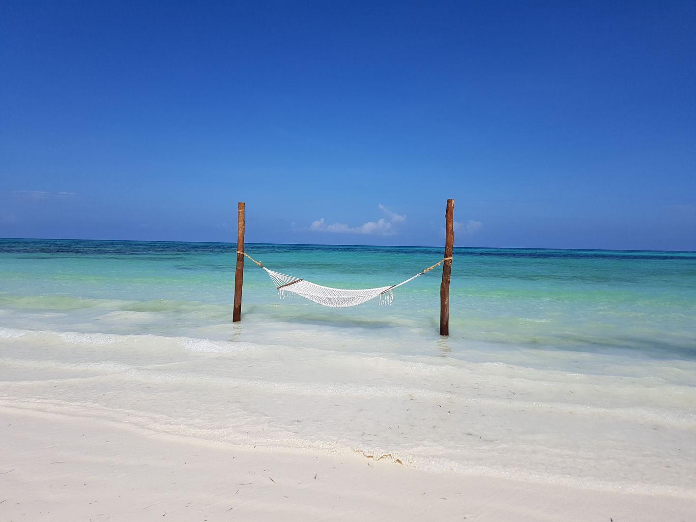 Photo of Zanzibar By Gypsea Trip