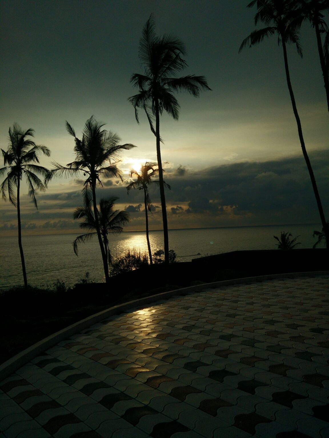 Photo of Kerala By Lohita