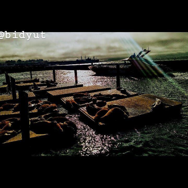 Photo of Fisherman's Wharf By Bidyut Kotoky