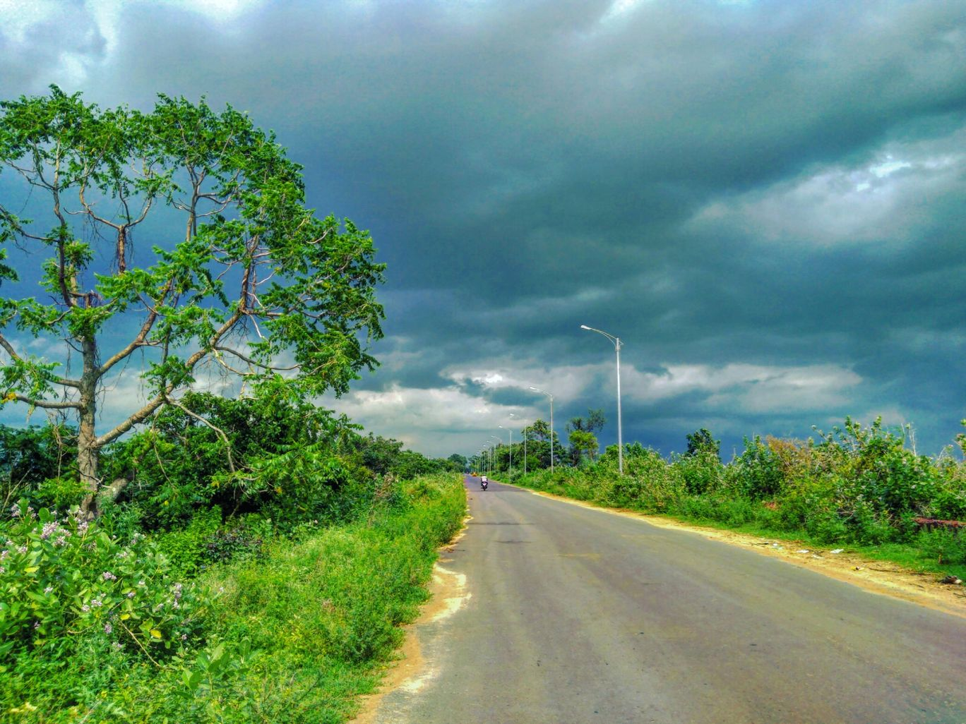 Photo of Odisha By Snehanshu Shome