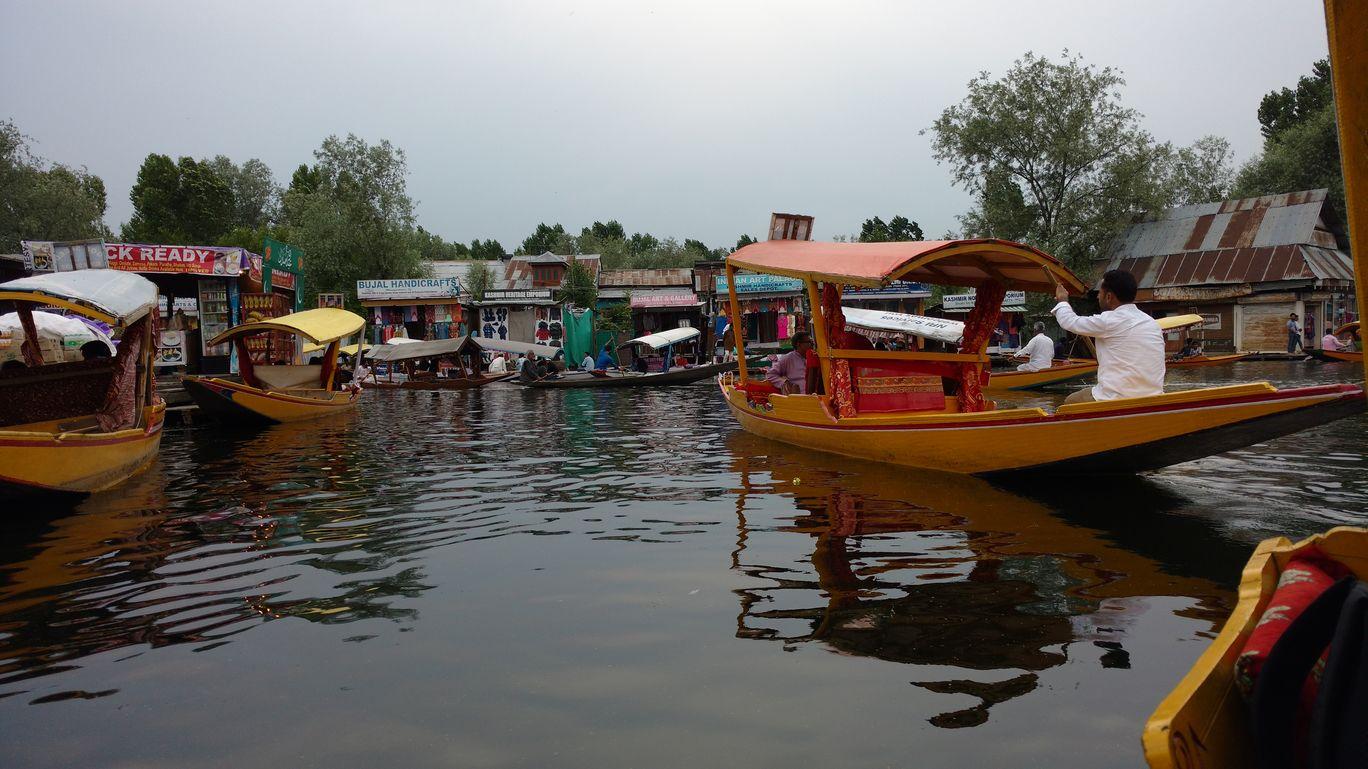 Photo of Srinagar By Ankush Goyal