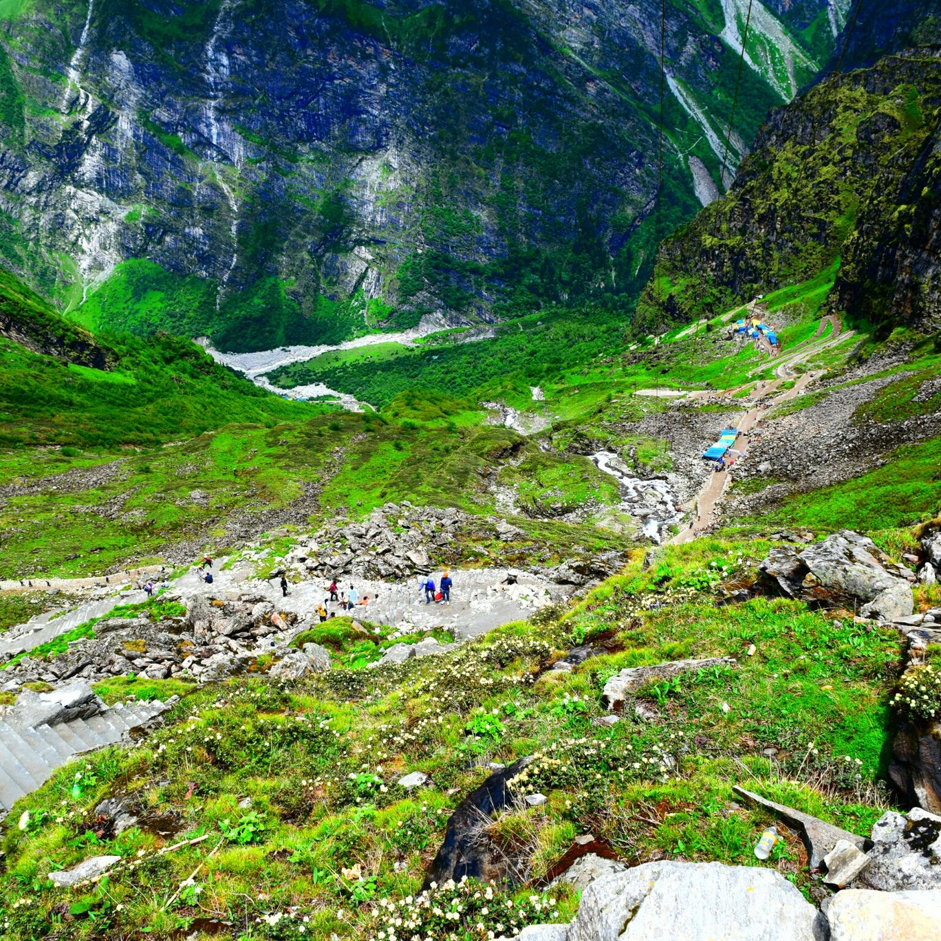Photo of Valley of Flowers National Park By Sunlight Stroller