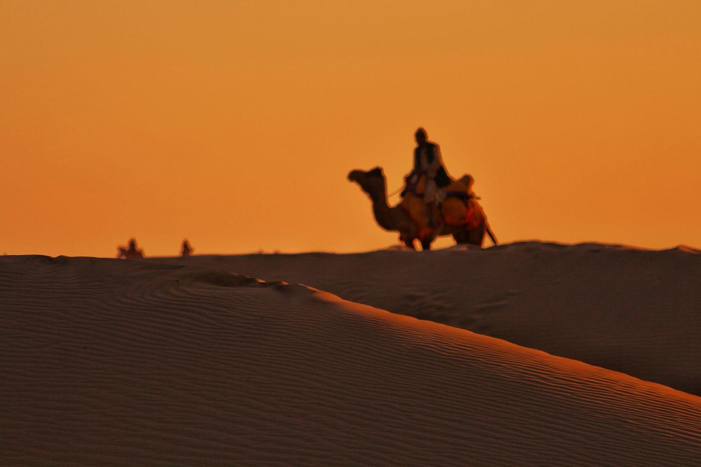 Photo of Jaisalmer By Romil Modi