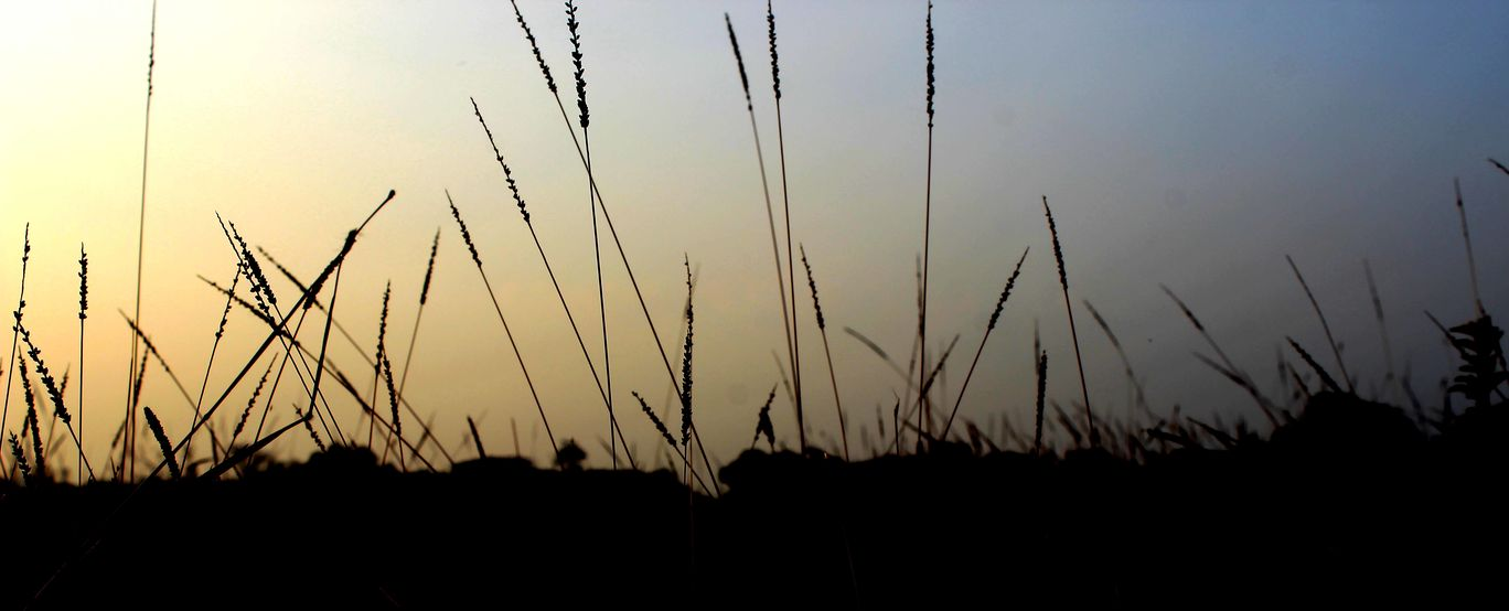 Photo of Ponnampet By nikhil46cta
