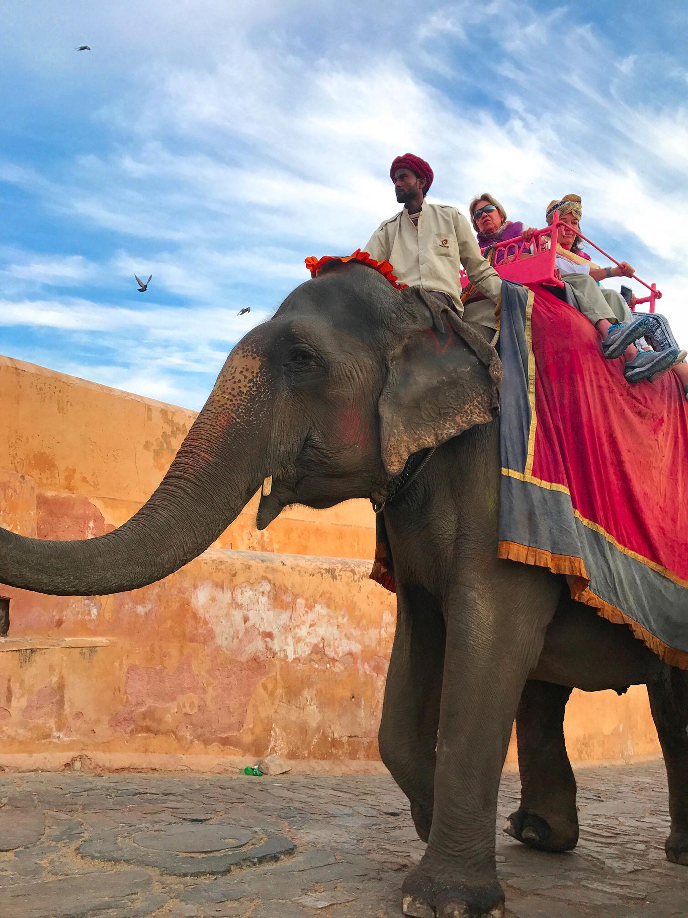 Photo of Jaipur By Purusottam Mohanty
