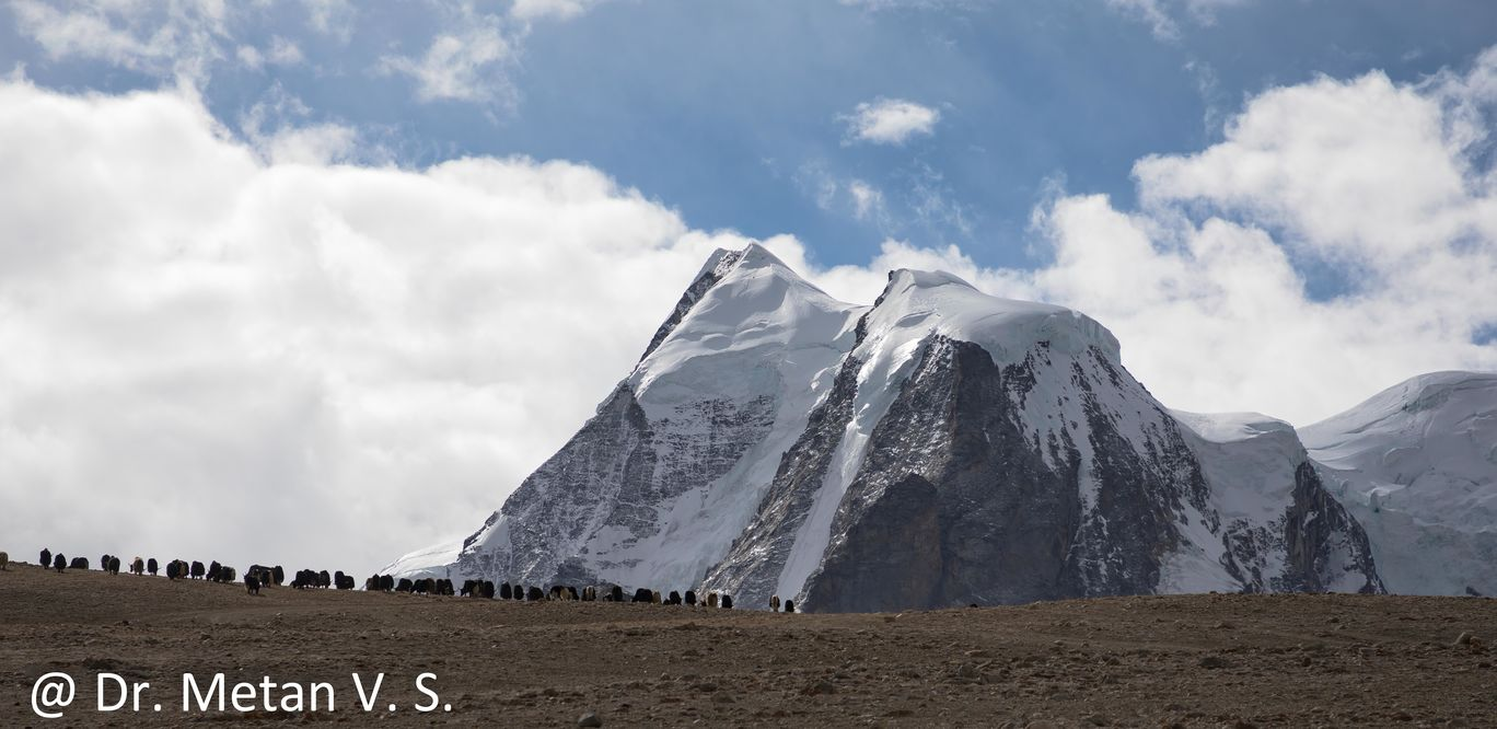 Photo of Sikkim By Dr. Vyankatesh Metan