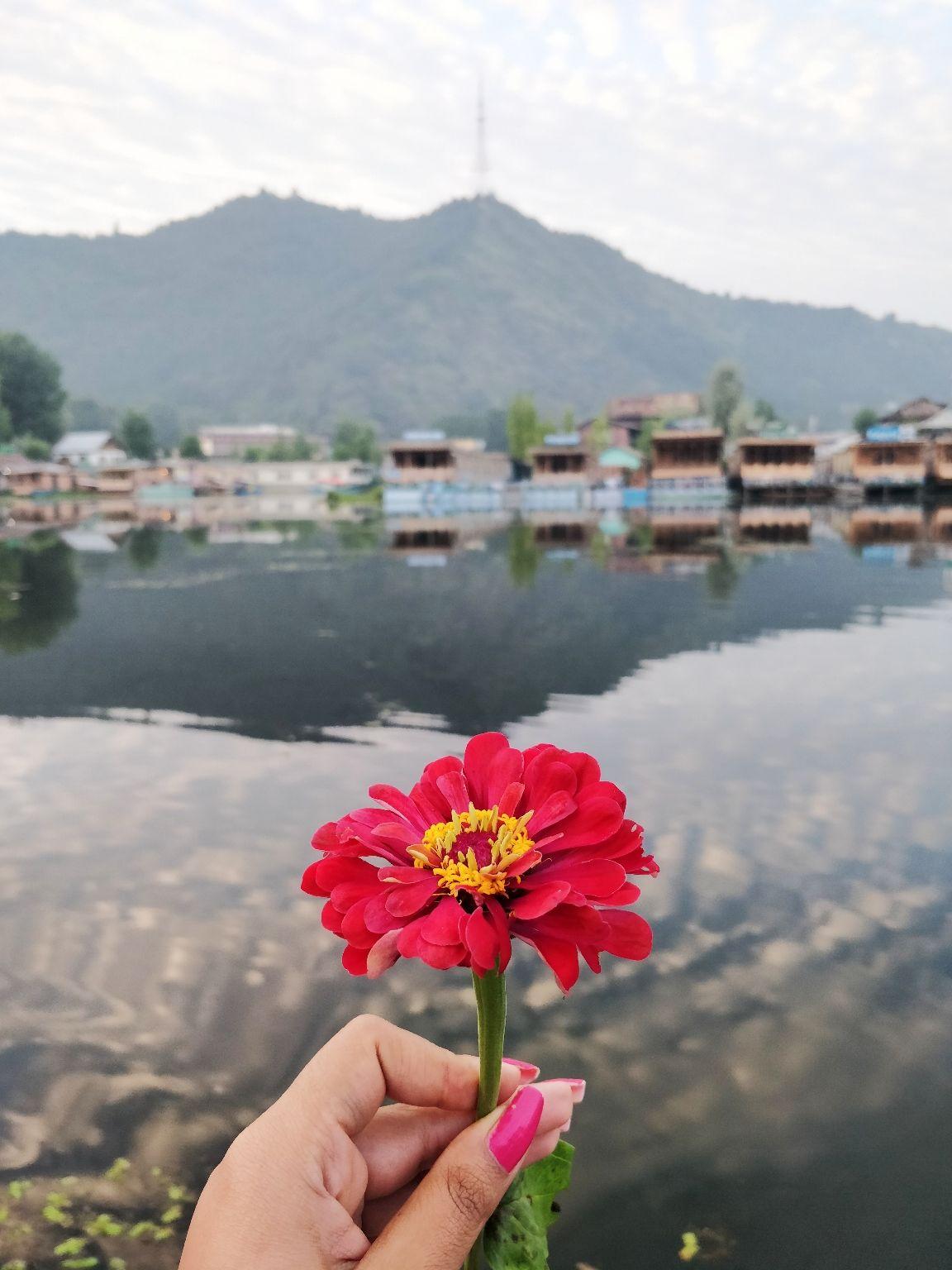 Photo of Jammu and Kashmir By Surbhi Sabharwal