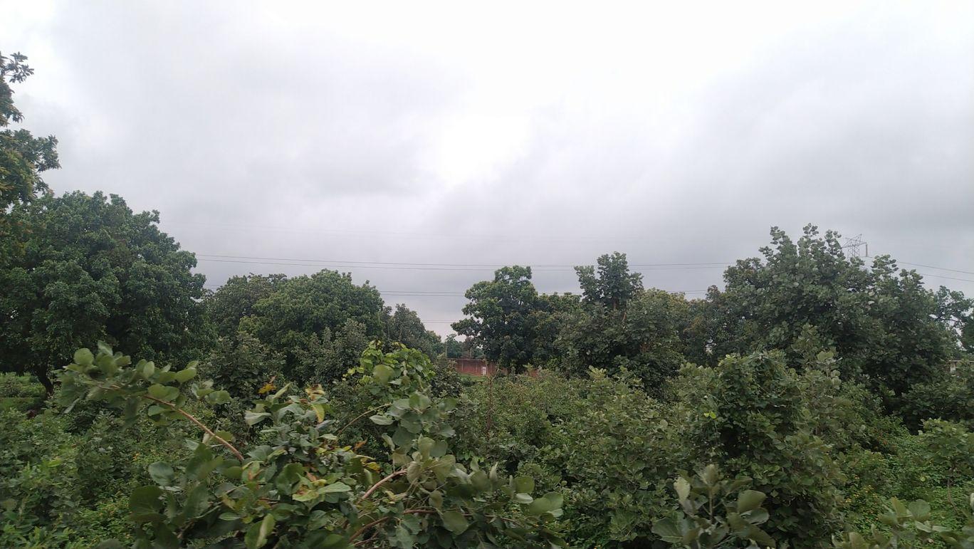 Photo of Hoshangabad By Astha Pathak