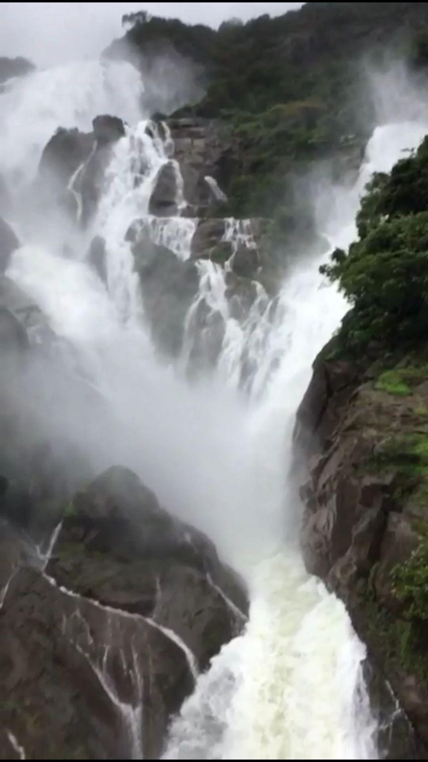 Photo of Dudhsagar Falls By Preeti Utnal