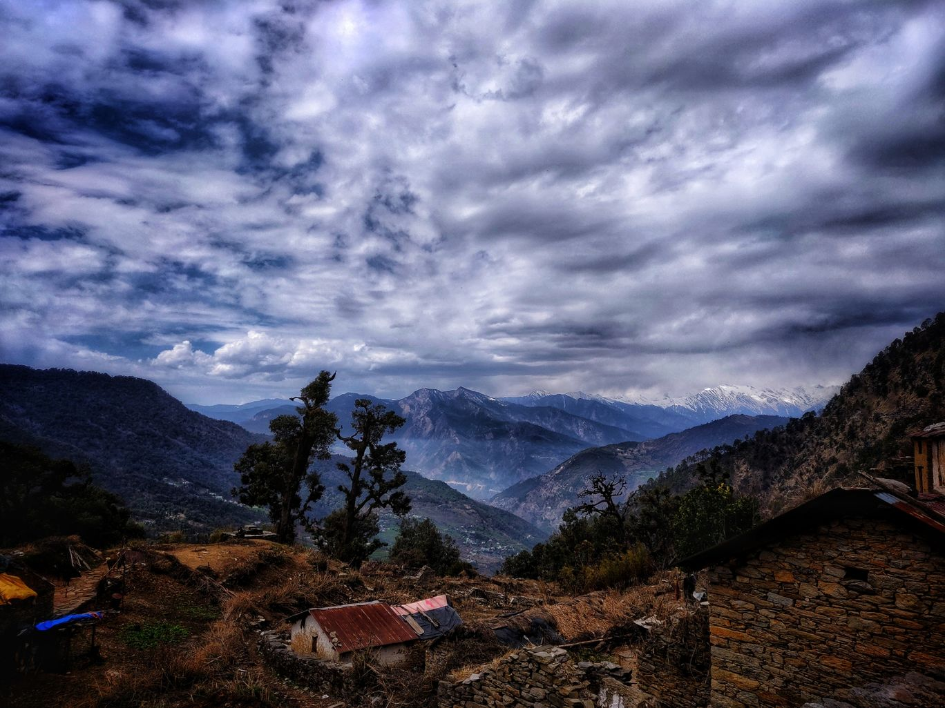 Photo of Chopta By abhsihek sahlot