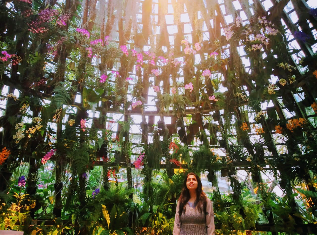 Photo of Singapore By Swati Tripathy