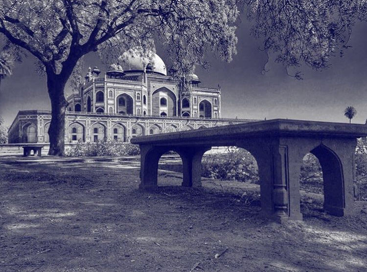Photo of Delhi By Shamli K