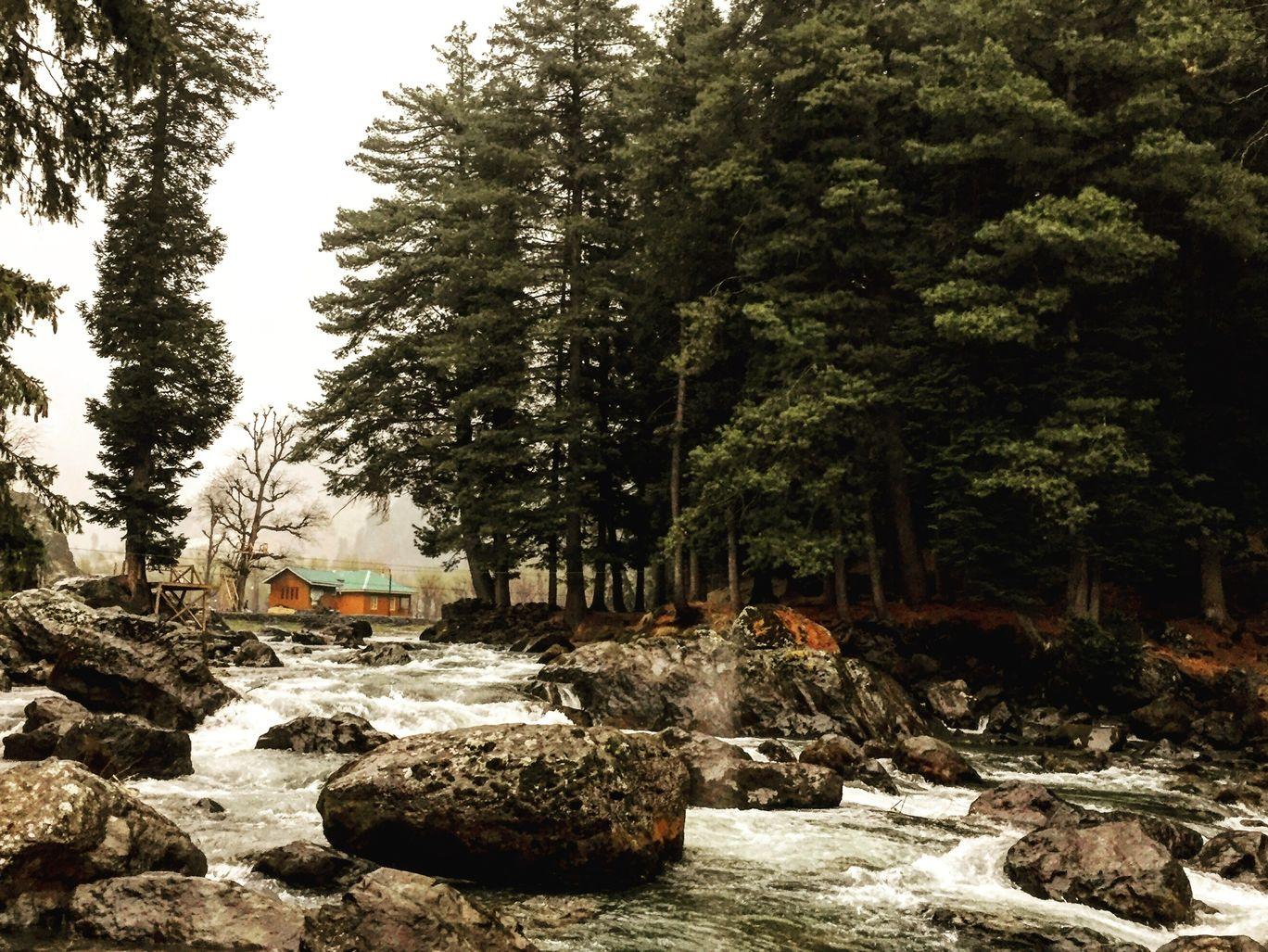 Photo of Jammu and Kashmir By Anushweta Baruah