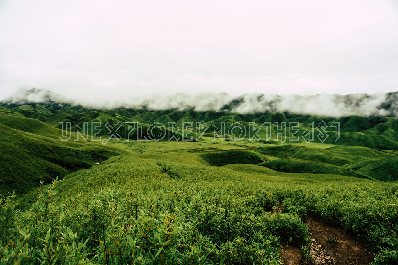 Photo of Dzükou Valley By Rituraj Gogoi