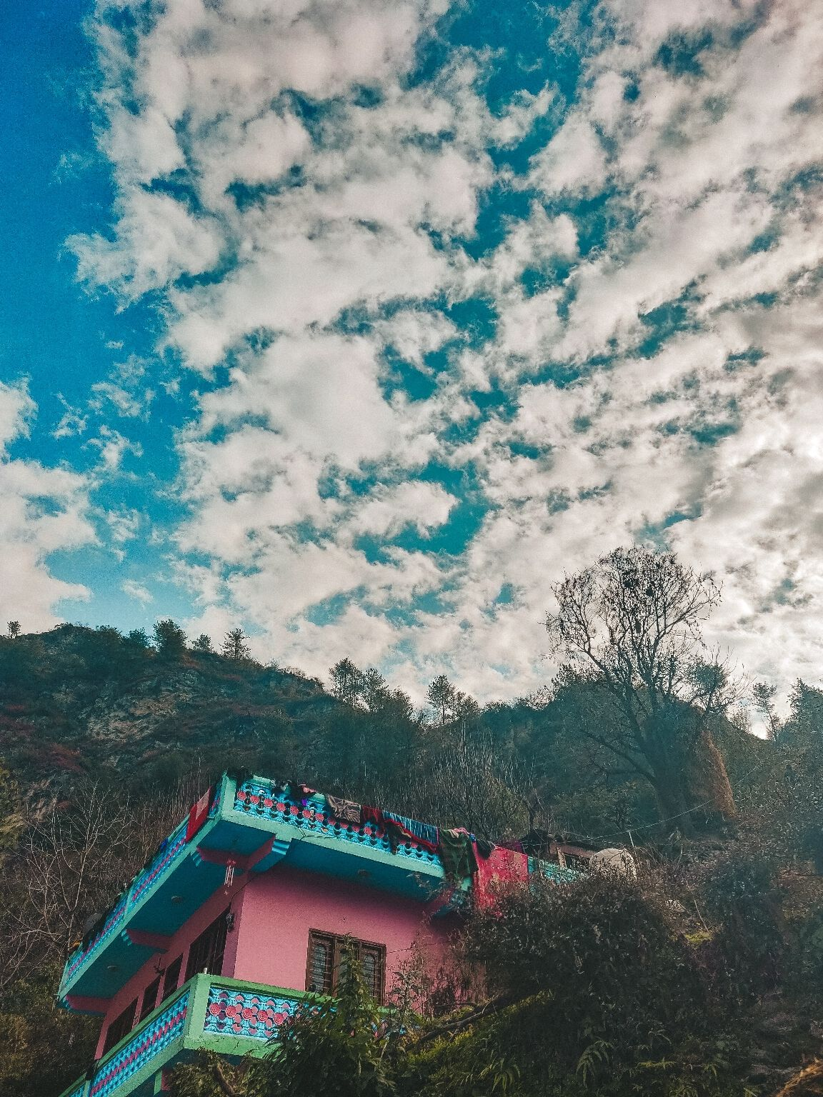 Photo of Tirthan Valley By Divya Sahu