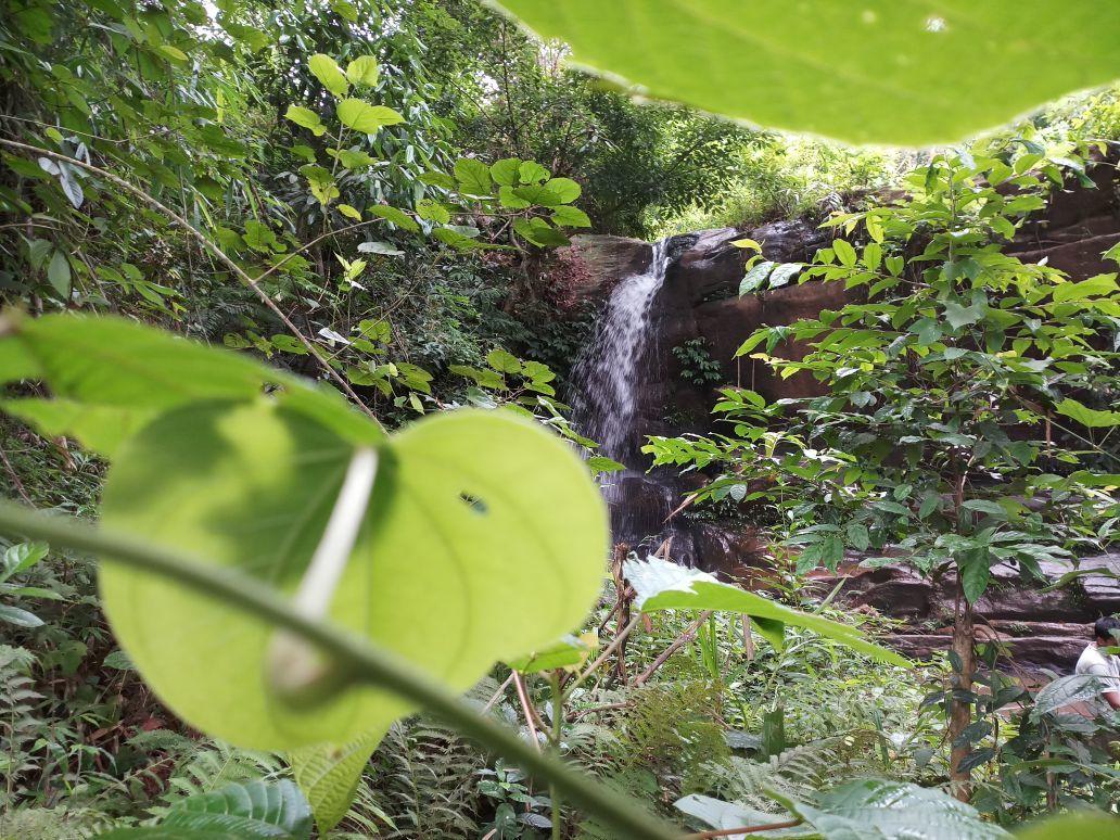 Photo of Garbhanga Forest By Anurag shrivastava
