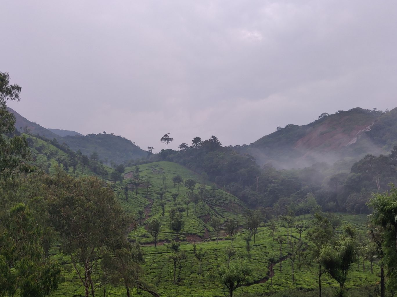 Photo of Valparai By Samyuktha Subramani