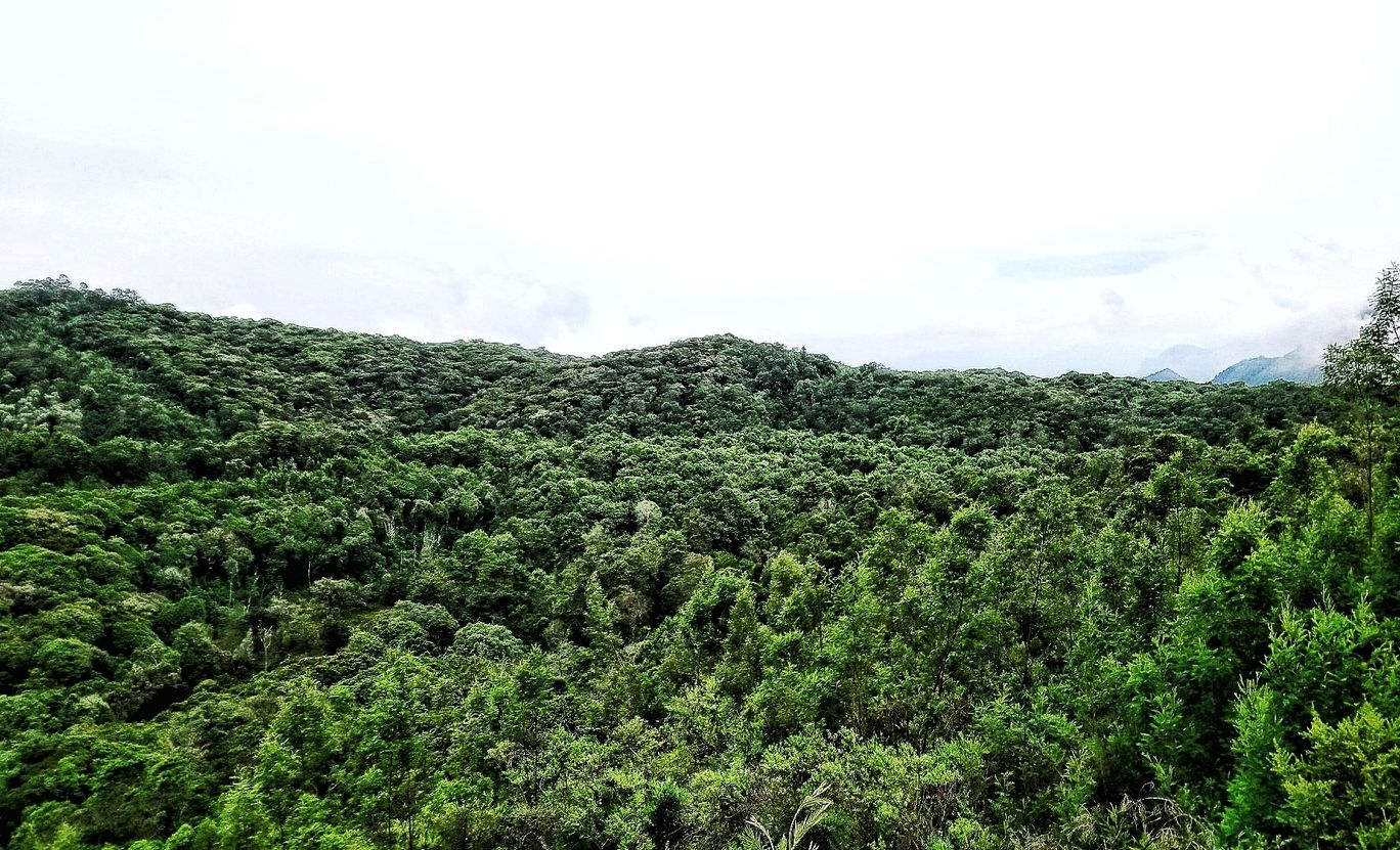 Photo of Kodaikanal By Lourdessequeira