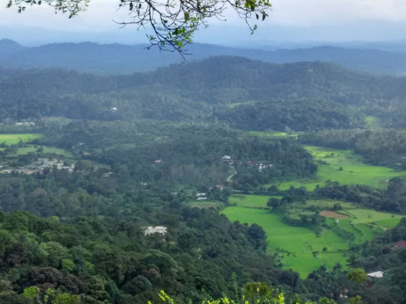 Photo of Coorg By Hari Chandu Vakacharla
