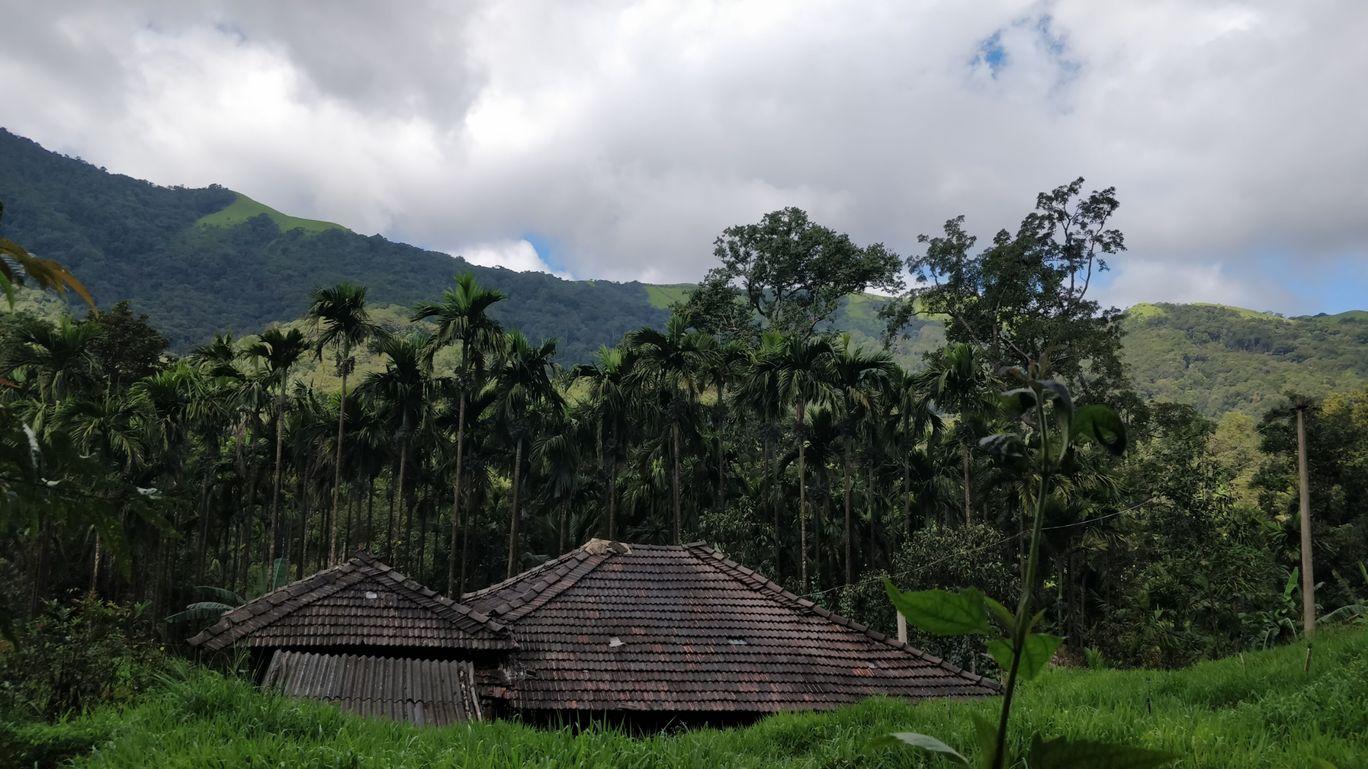 Photo of Kodachadri Trek Trail By Hari Chandu Vakacharla