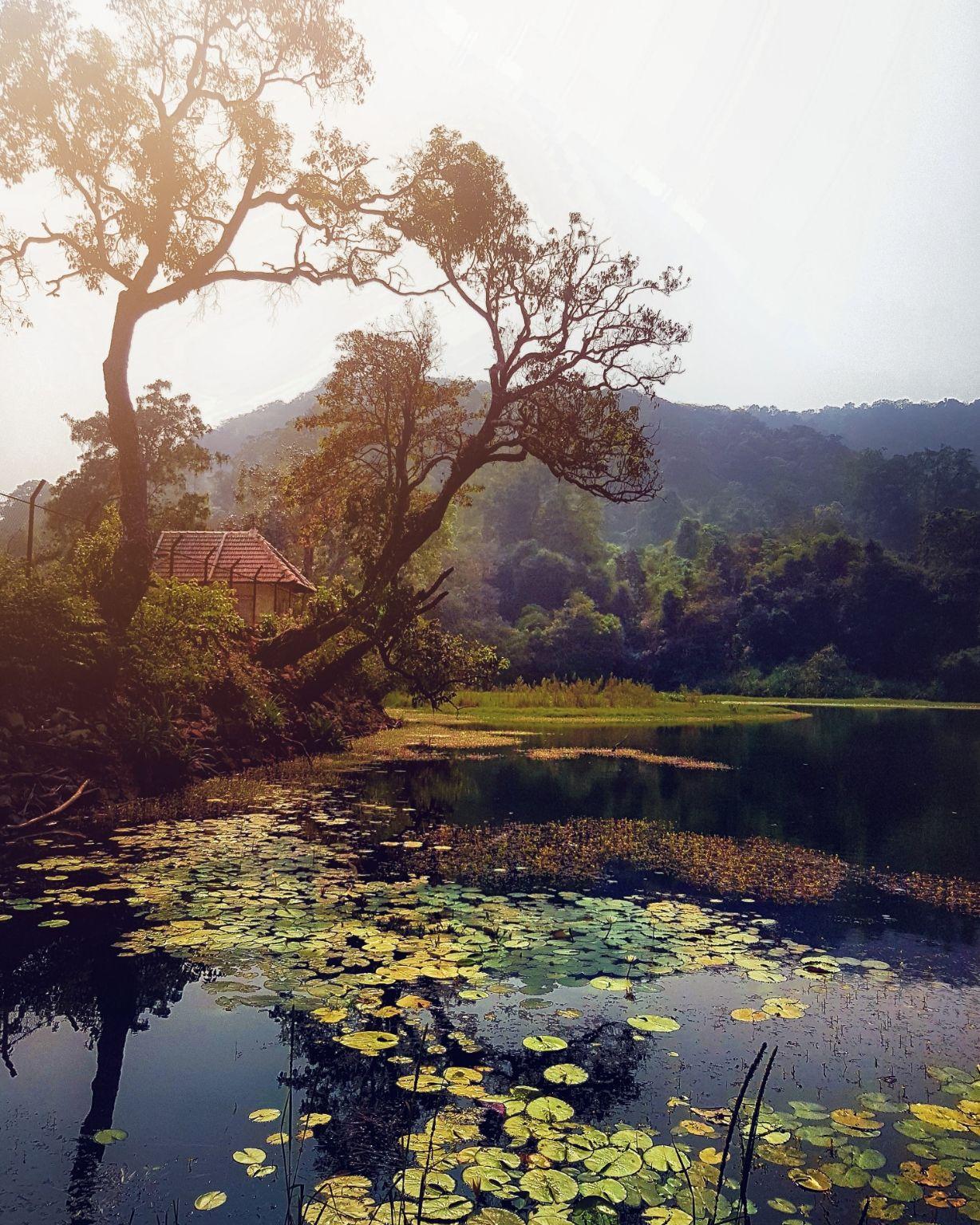 Photo of Shivamogga By Rajath Bharadwaj