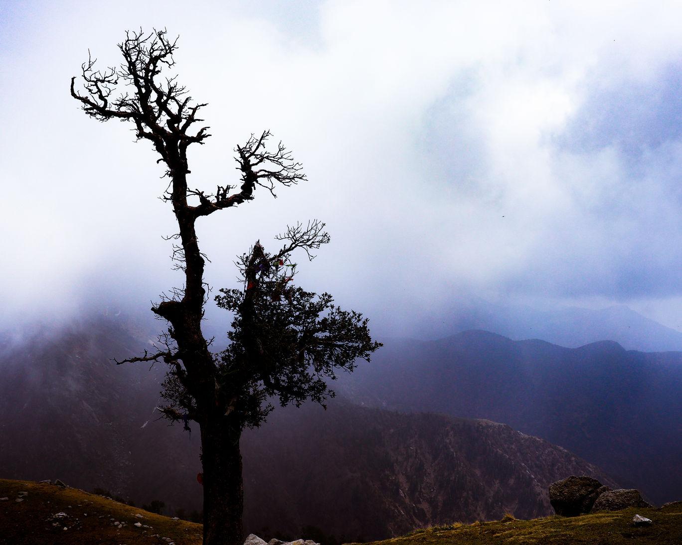 Photo of Triund Trek By Sunny Thakur