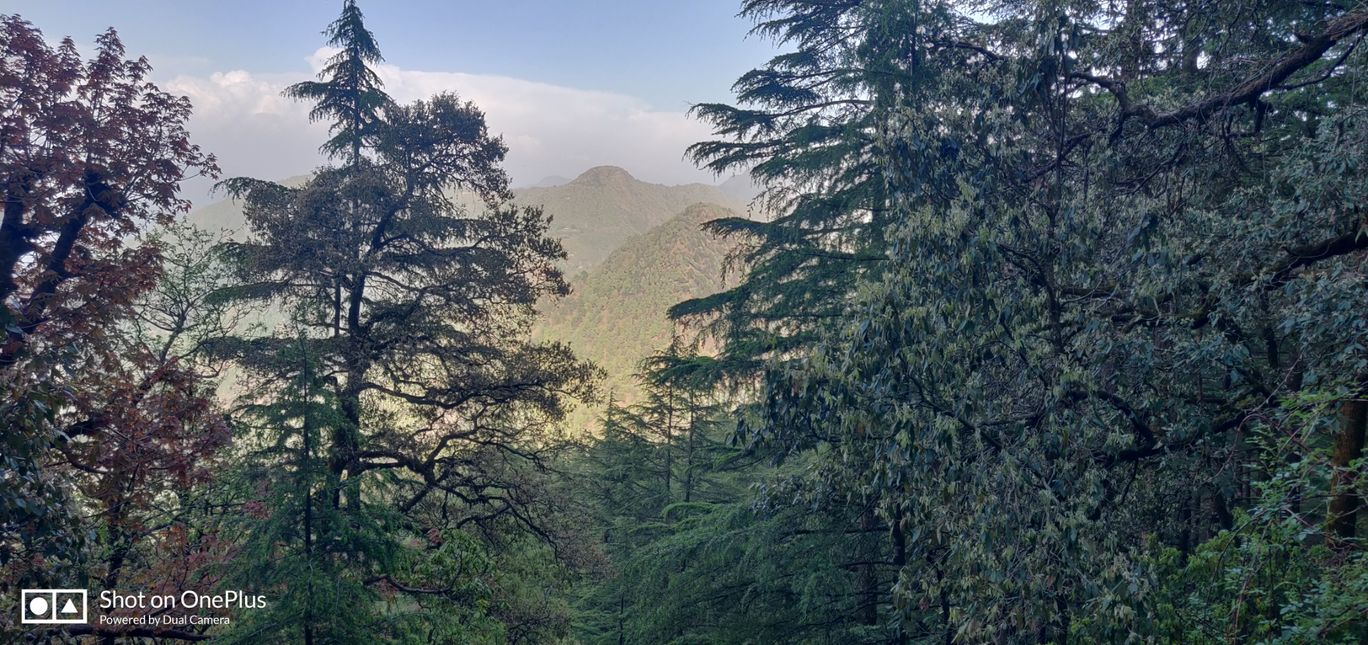 Photo of Landour By Aradhana Mohanty