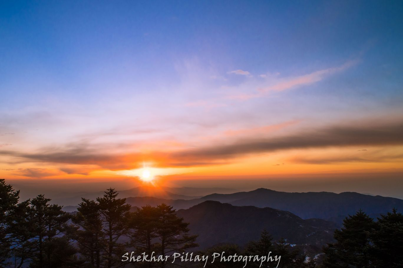 Photo of Photos during trek to Sandakphu By Shekhar Pillay