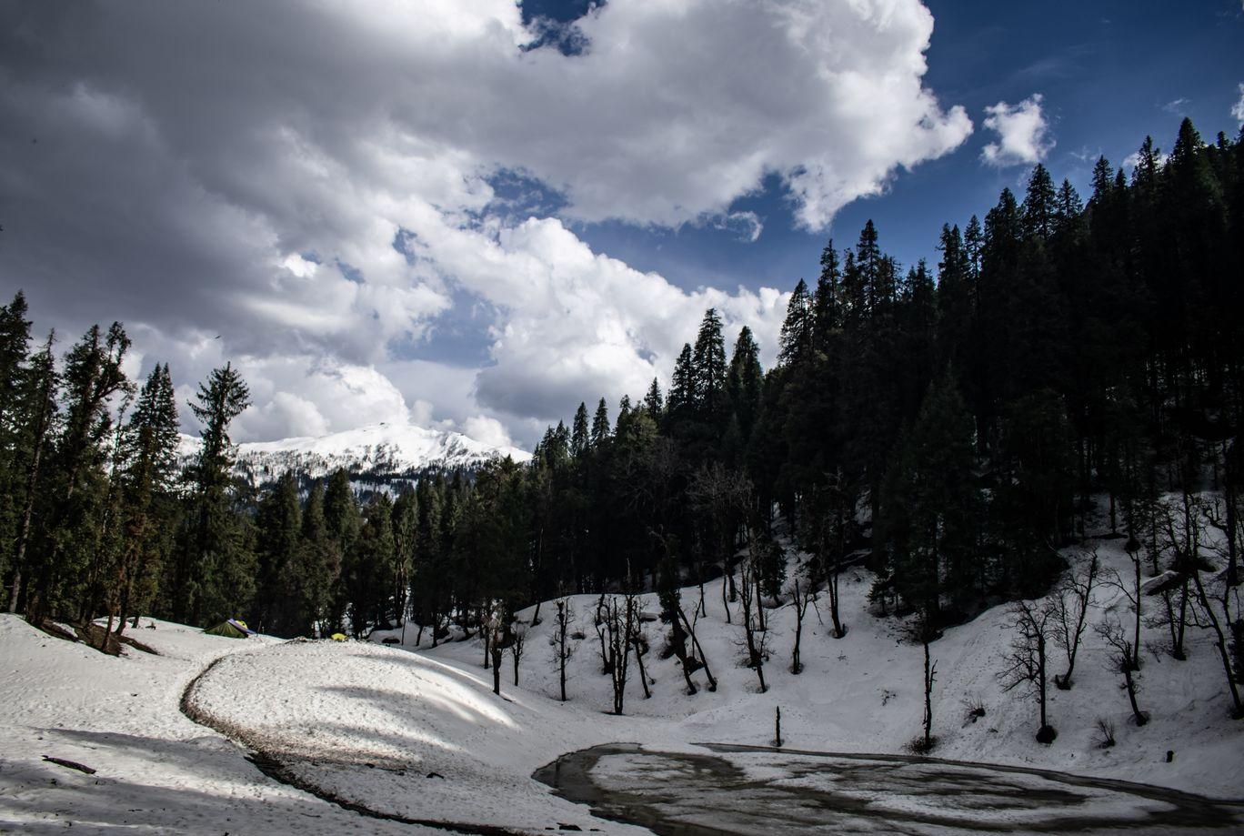 Photo of Kedarkantha Trek By Shiladitya Ghosh