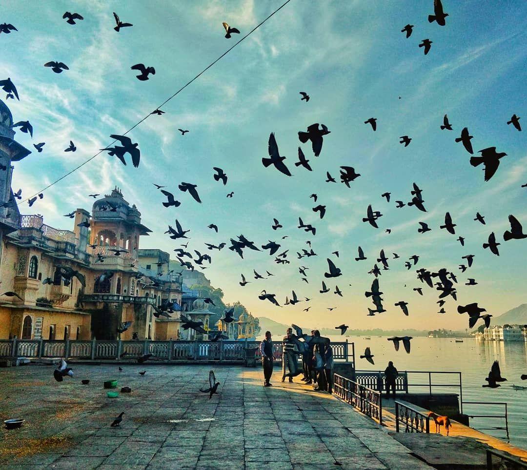 Photo of Udaipur By Prasad Nakhawa