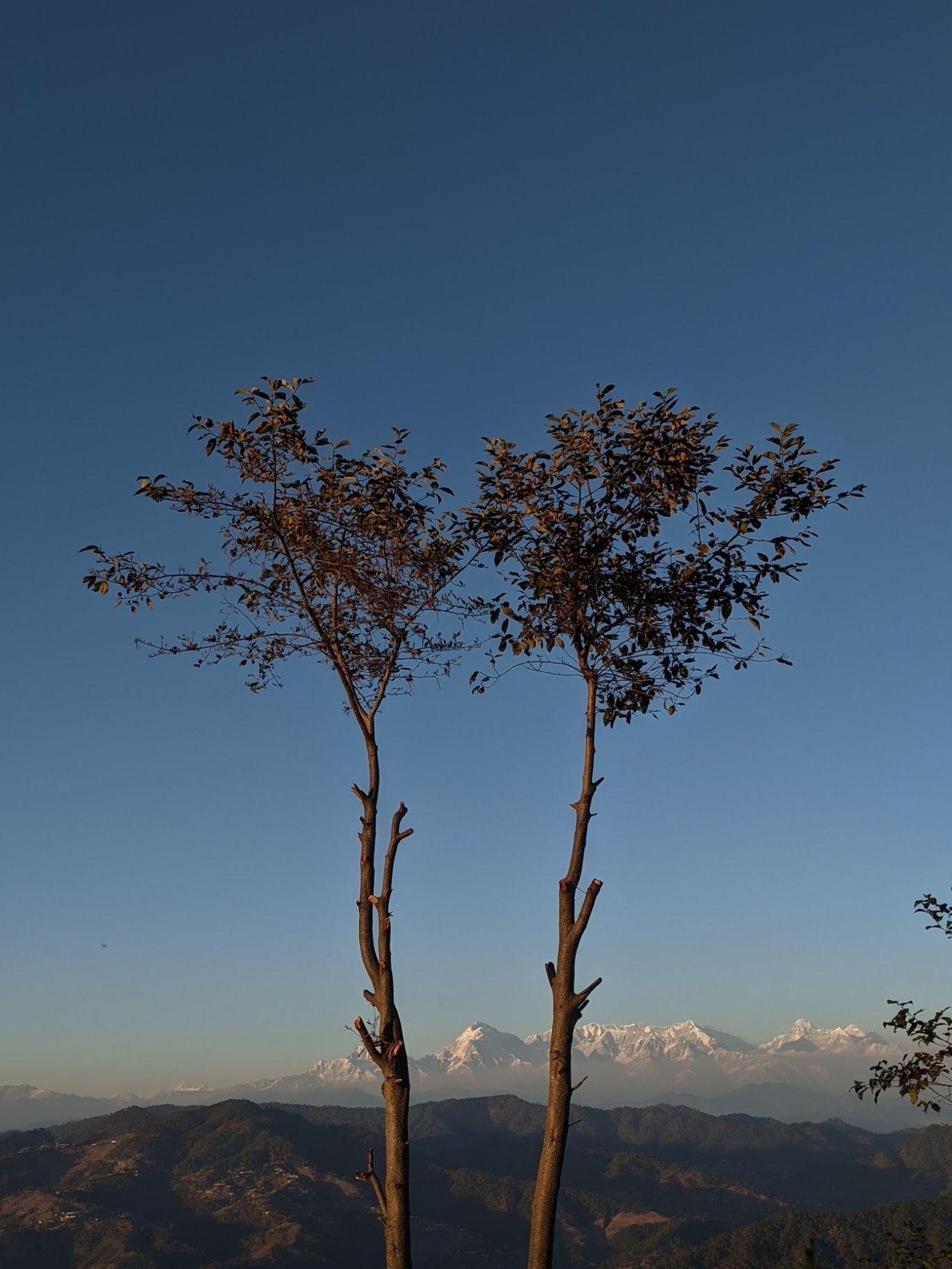 Photo of Almora By Srijan Goyal