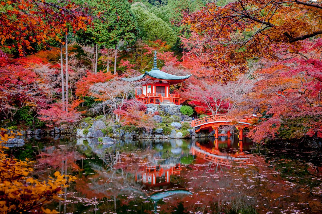 Photo of Kyoto By Priya Pareek