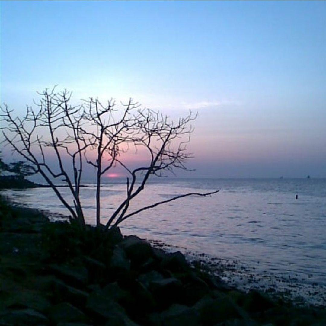 Photo of Kochi By Priyanka Tanwar