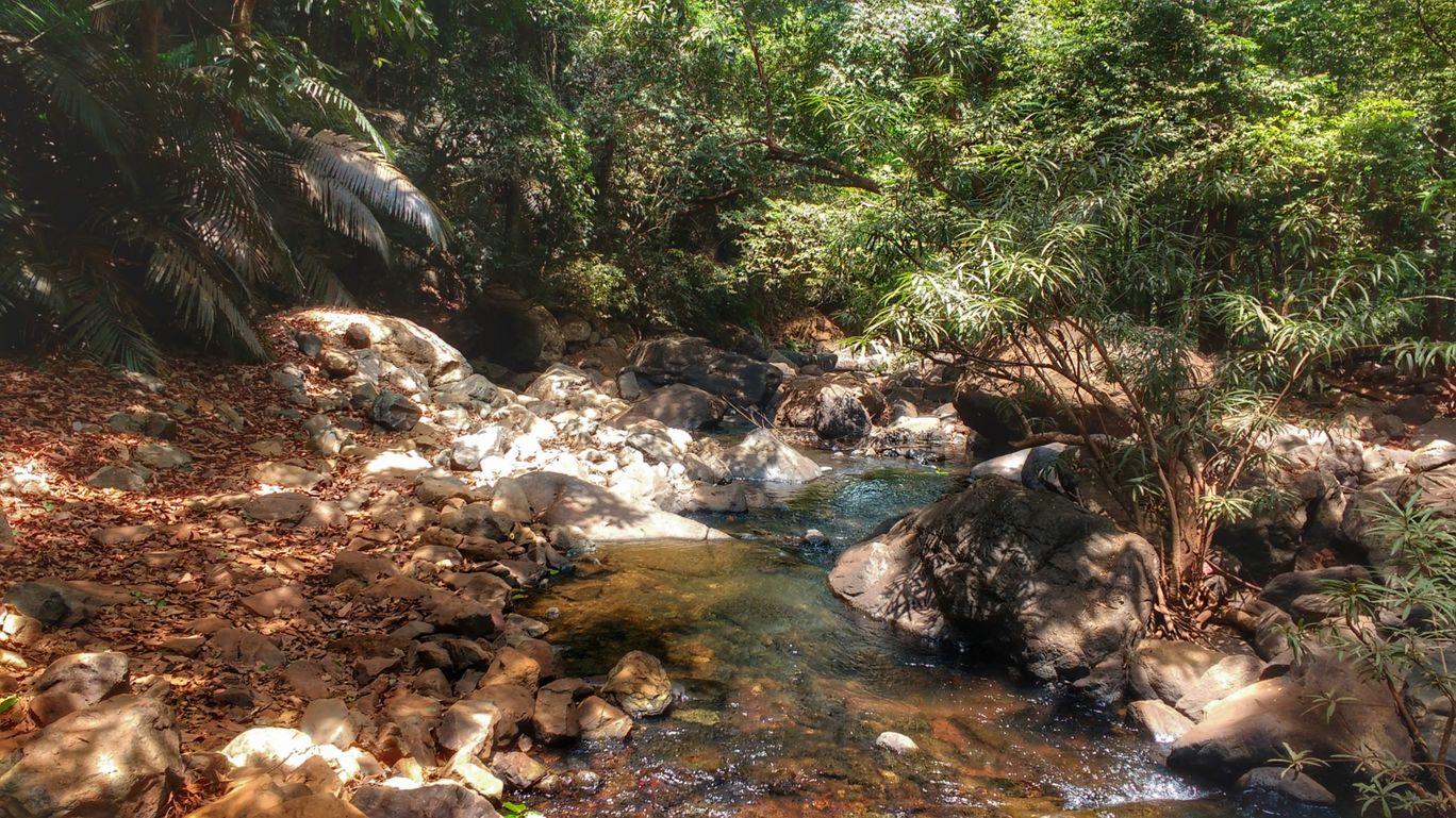 Photo of Goa By Aastha Tongia