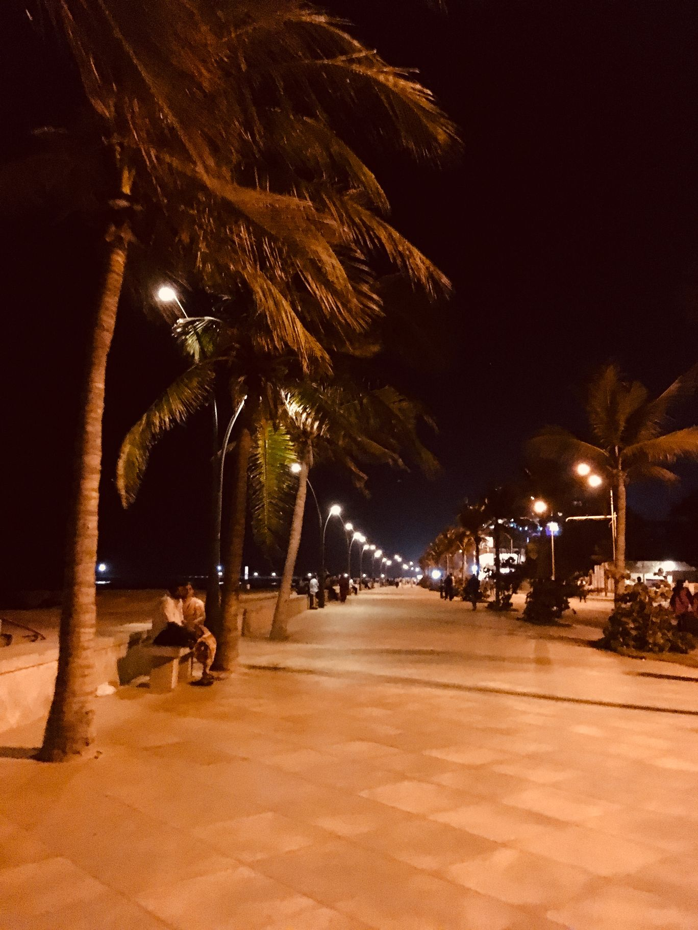 Photo of Puducherry By Preeti Singh