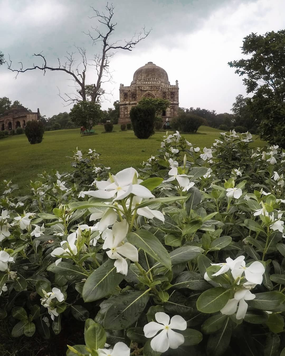 Photo of Lodhi Estate By sachin chauhan