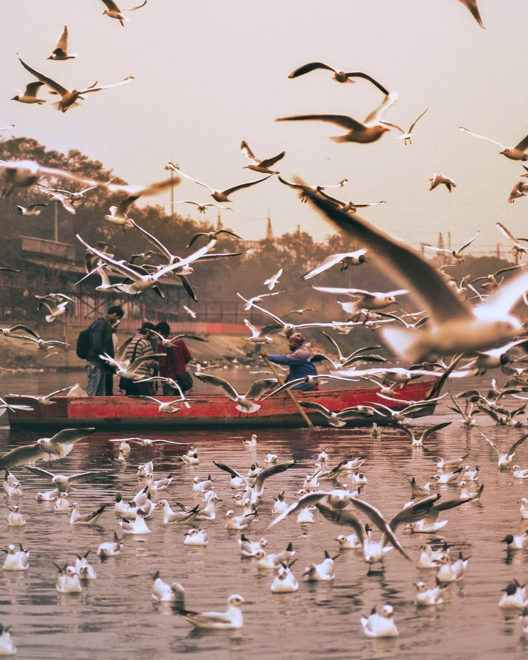 Photo of Yamuna Ghat By sachin chauhan
