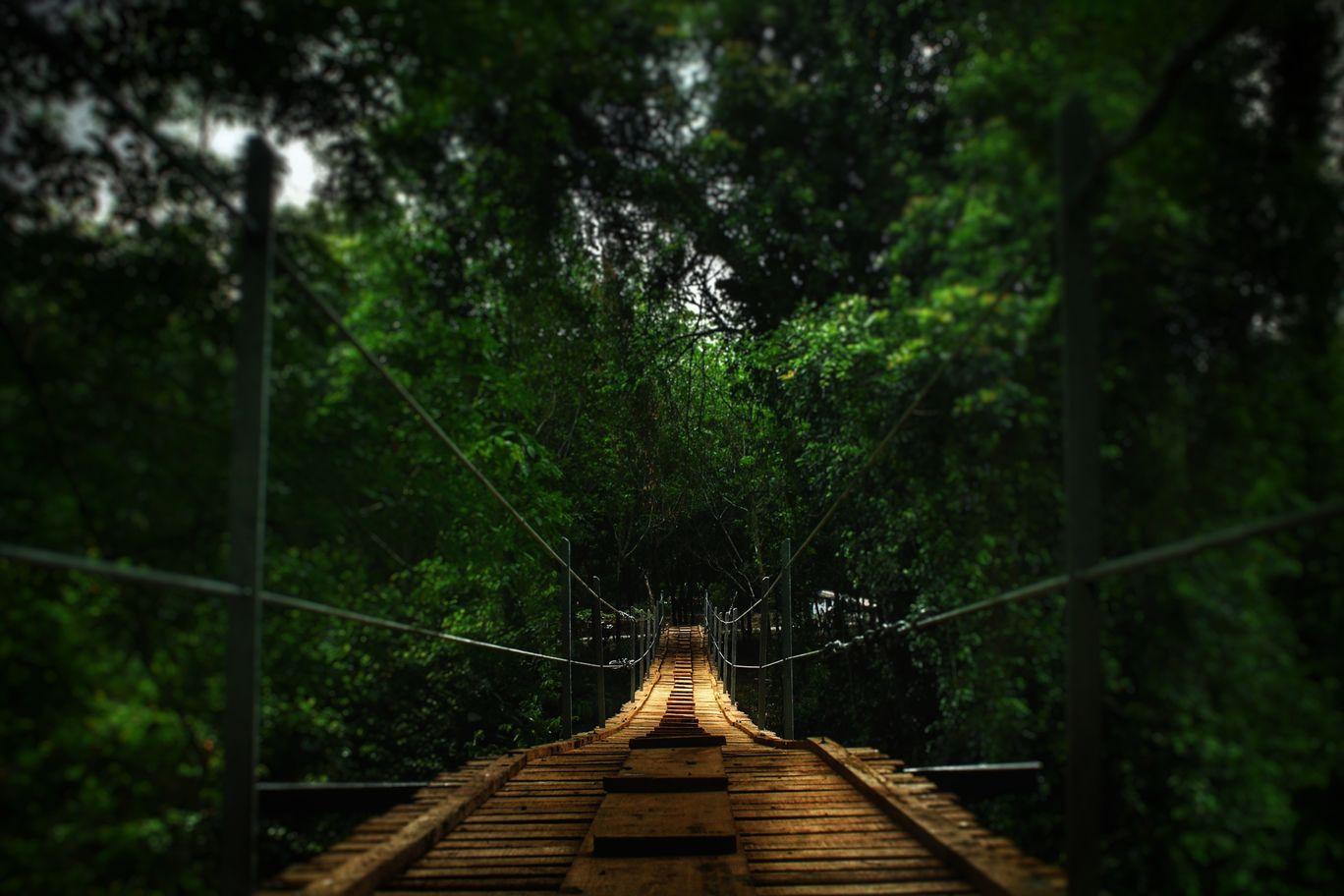 Photo of Chokkana Hanging Bridge By Dennis DA