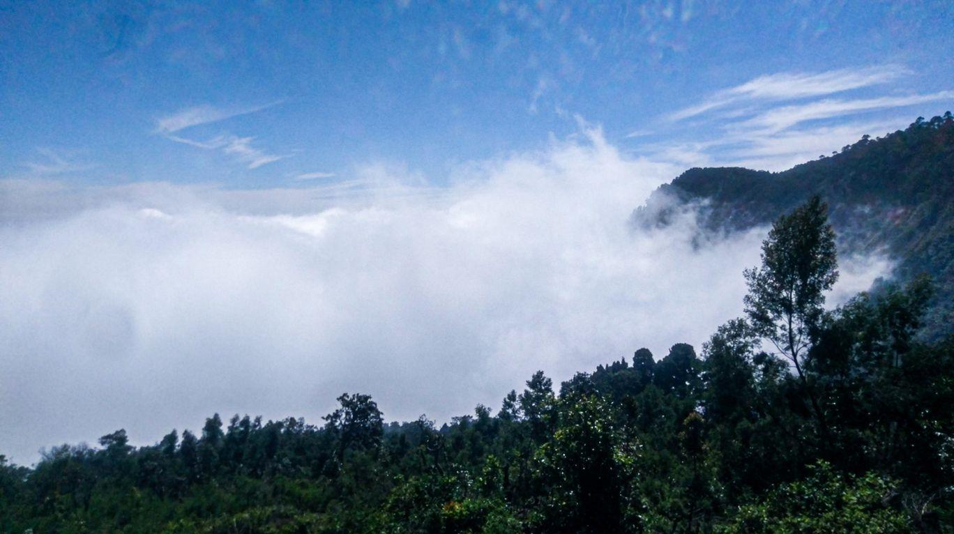 Photo of Kodaikanal By Phototherapeutic