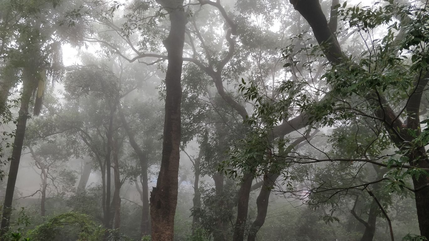 Photo of Matheran By Roshani Rathi