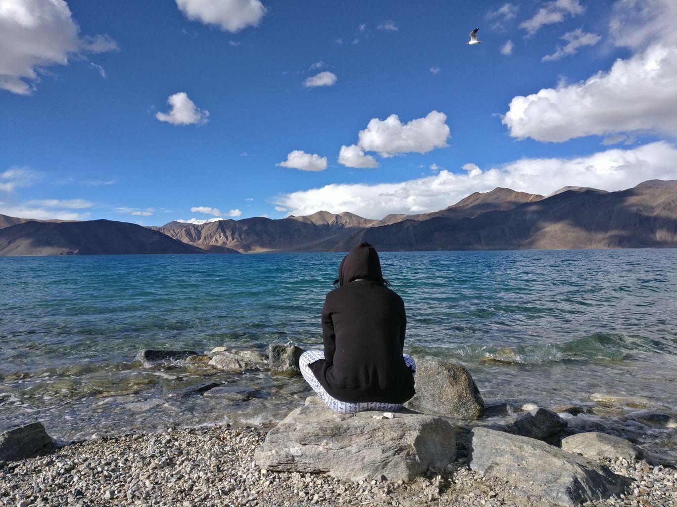 Photo of Pangong Lake By Jayshree Harinkhede