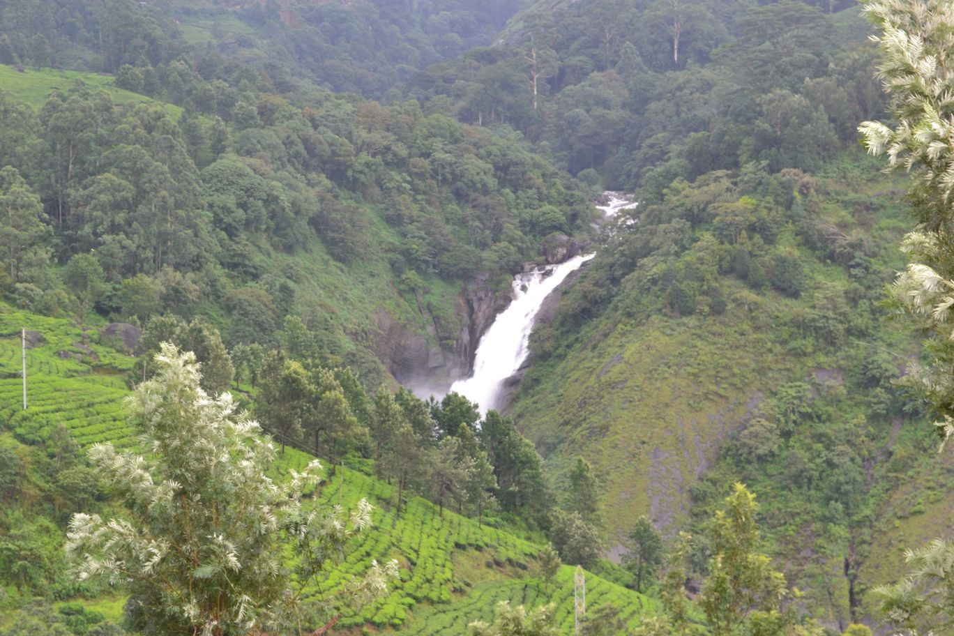 Photo of Munnar By MjasTahair M