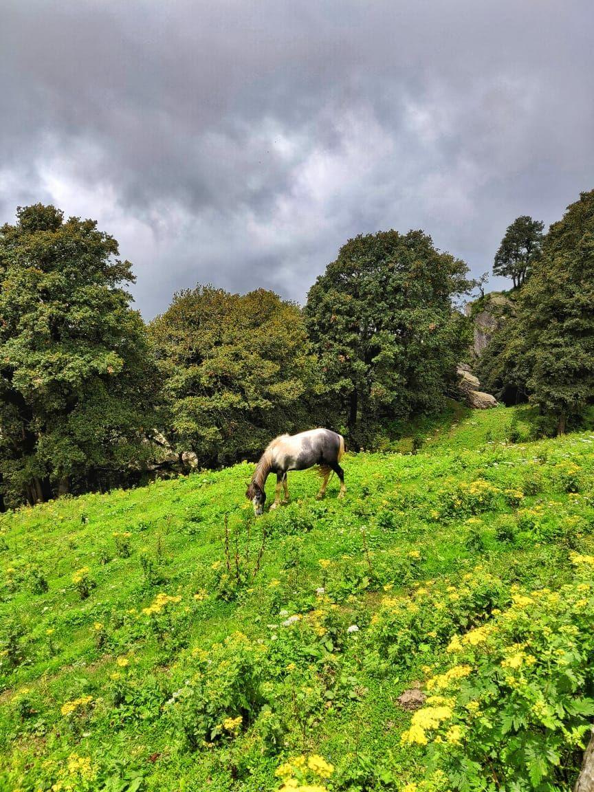 Photo of Spiti Valley By Gayatri Sonar